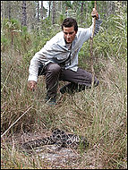 Bear Grylls meets a snake on Man vs. Wild