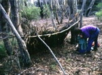 shelter from Australian Survival Courses